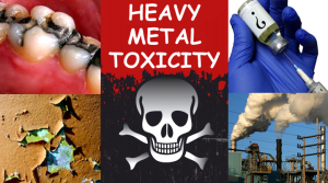 heavy metals2