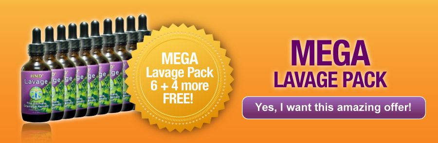 offers-2017-mega-lavage