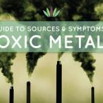 Toxic metals symptons