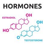 sex-hormones