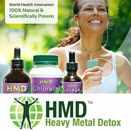 HEAVY METAL DETOX It is well known that exposure to toxic heavy metals is one of the root causes of symptoms like low energy, mood disturbances, brain fog, memory issues, behavioural changes, headaches, hearing problems, irritability, tremors, neurological problems such as MS, skin problems, compromised detoxification organs, chronic aches and pains like fibromyalgia and many […]